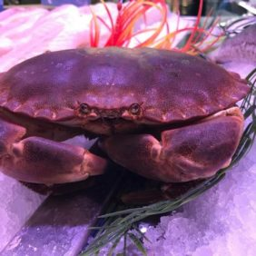 Le Crabe vous attends !